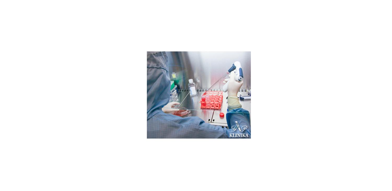 SVF стволовые клетки