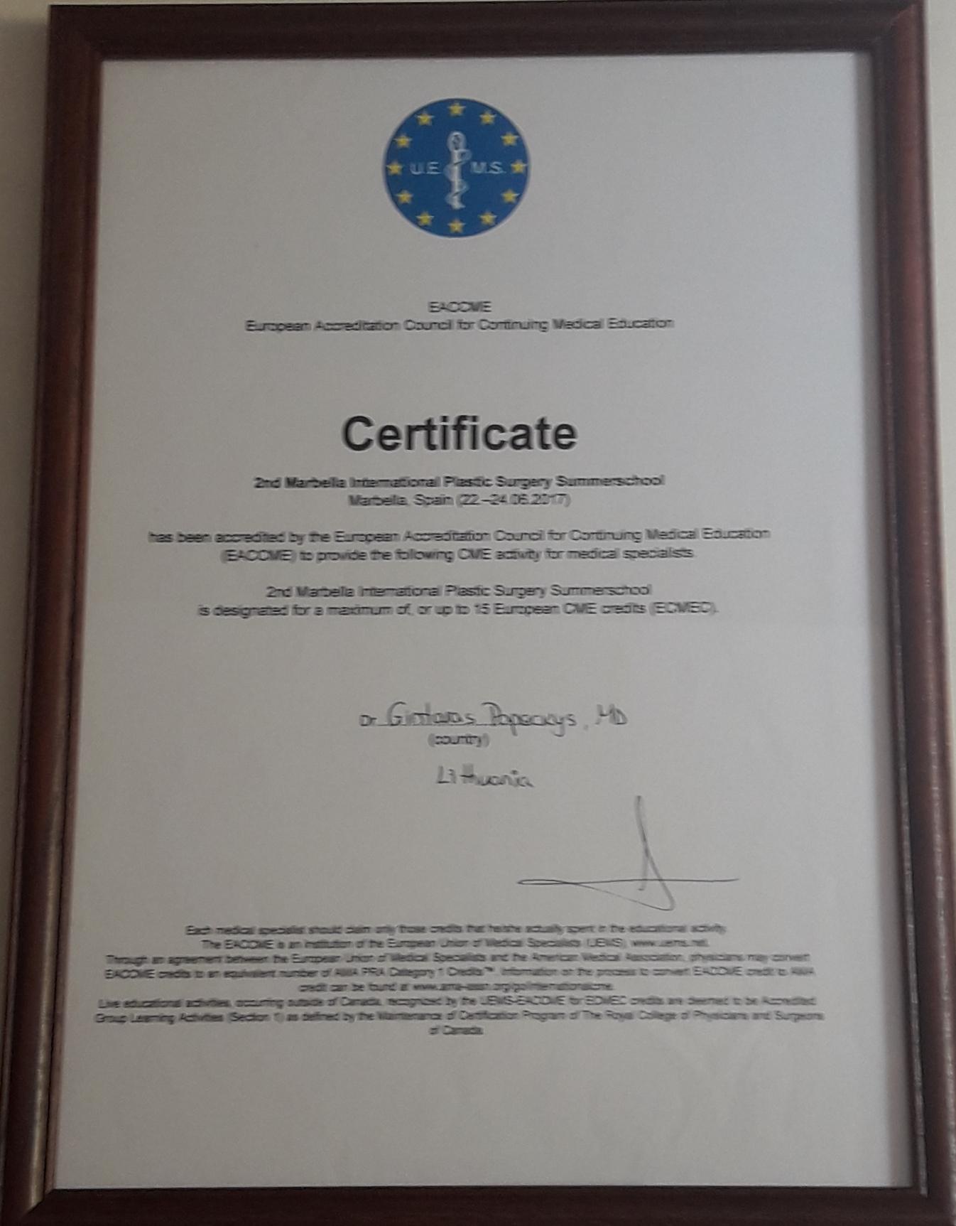 Gintaras Papeckys sertificate